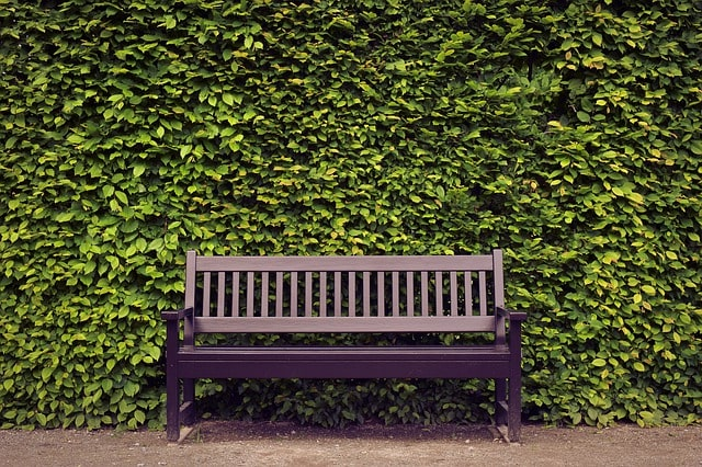 Most Important Tips for Building an Outdoor Garden Bench 5