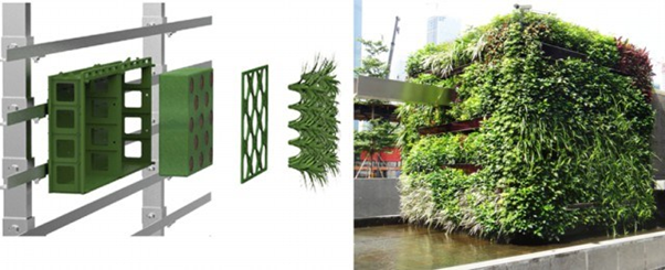 All That You Need to Know About the Living Walls Planters and Vertical Gardening? 2