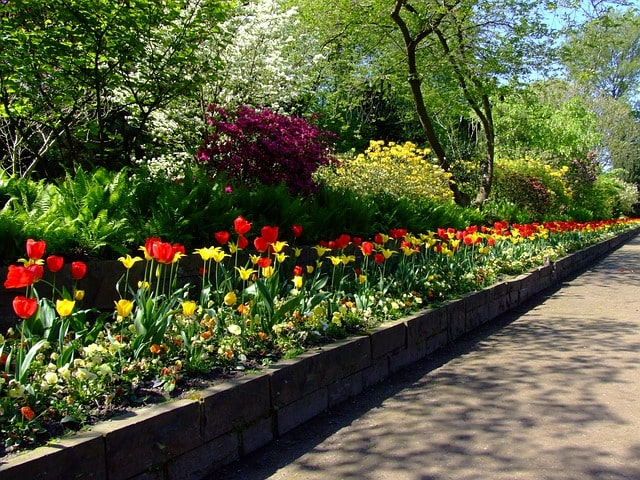 Tips & Ideas to Edging a Flower Bed to Brighten Your Backyard 3