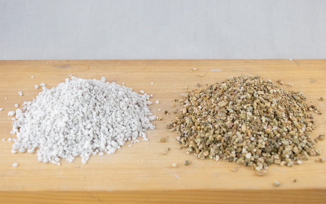 What Are Perlite & Vermiculite? How & When to Use Them?