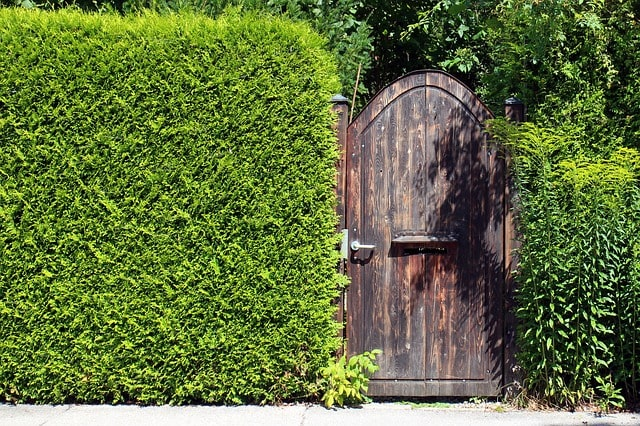 50 Amazing Garden Gates Ideas to Try Today {various materials and design} 6