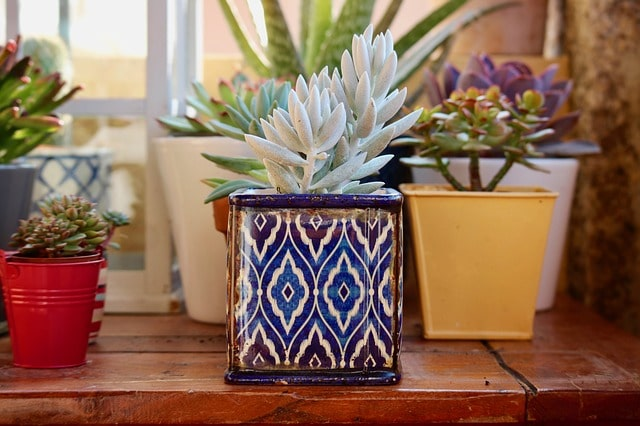 How to Decorate Terracotta Pots & Terra Cotta Planters? 1