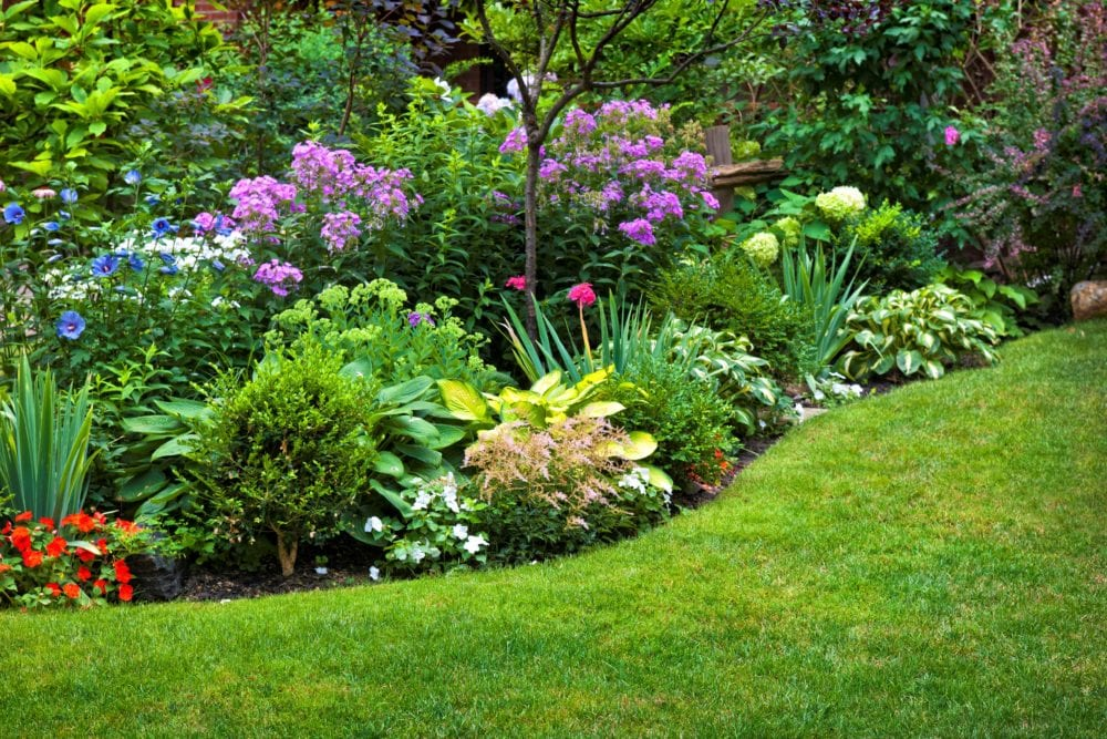 Ideas & Tips for Creating A Plant Border 1