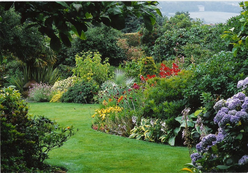 Ideas & Tips for Creating A Plant Border 2