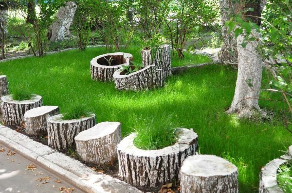 Tree stump idea of a container