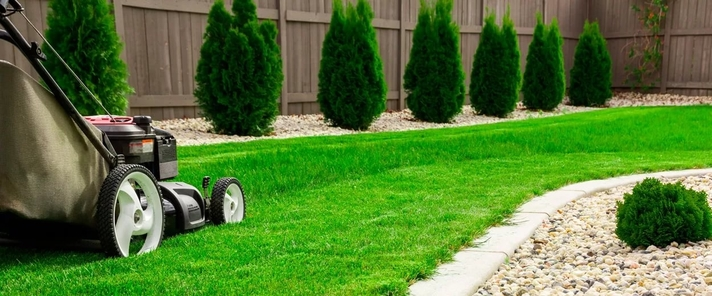 Lawn Care Tips: How & When To Mow New Grass?
