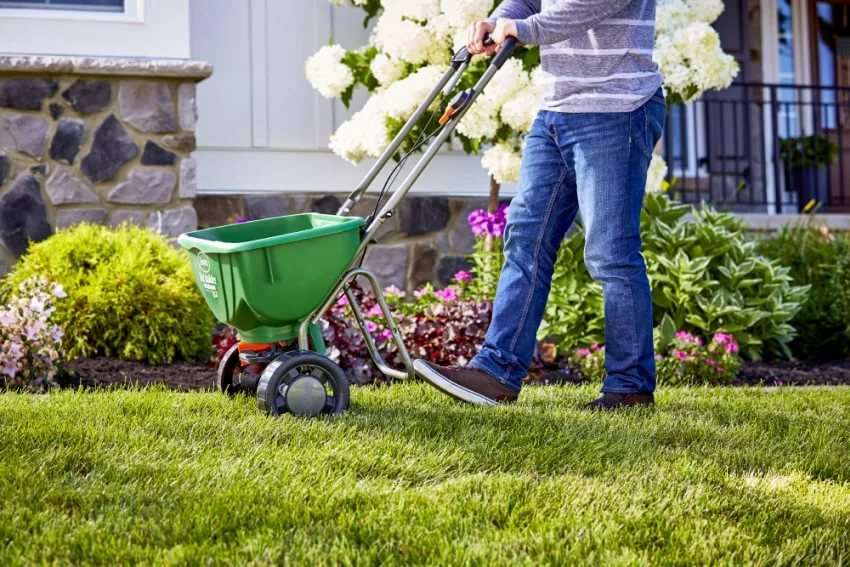 What Is Milorganite? Why I Apply It To My Lawn? 2