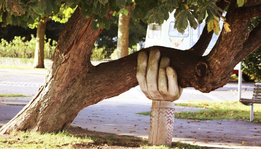 How to Fix a Leaning Tree