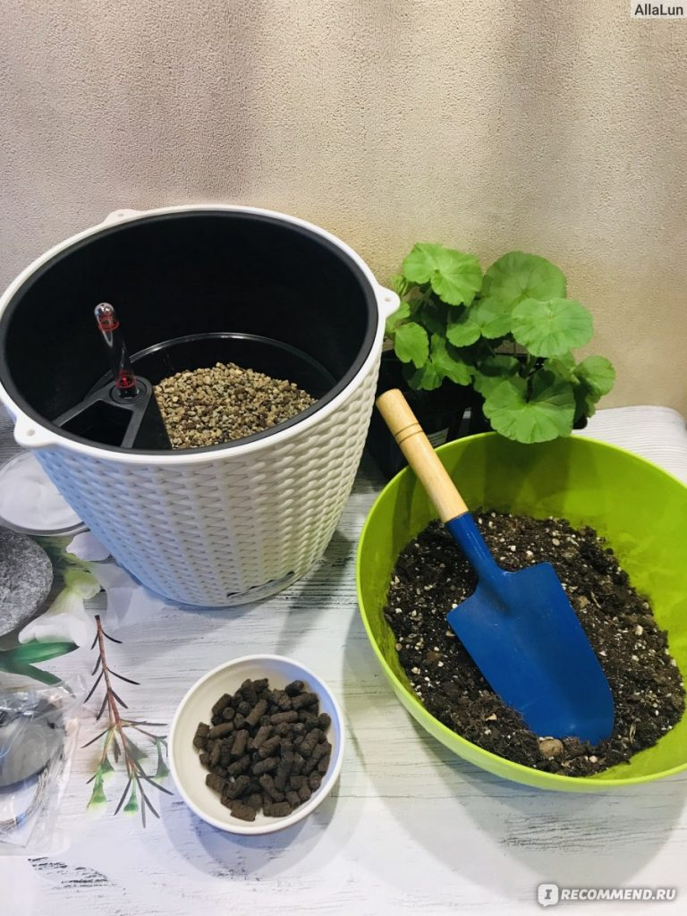 How To Make Your Own Succulent Soil DIY 1